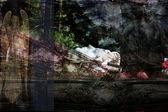 Achtergronden, gebaseerd op textuur — Stockfoto