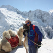 Man on the mountain with lama and camel — Stock Photo