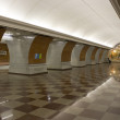 Metro station — Stock Photo #25095087