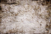 Concrete brown Wall — Stock Photo