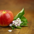 Apple with flowers — Stock Photo