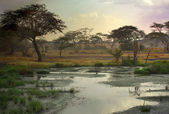 African landscape — Stock Photo