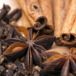 Star anise, cinnamon and cloves — Stock Photo #29213967