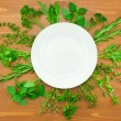 Fresh Herbs Collection as Border Around White Plate — Stock Photo