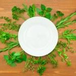 Fresh Herbs Collection as Border Around White Plate — Stock Photo #18380515