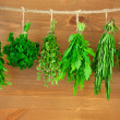 Fresh Herbs Collection / Vintage Style — Stockfoto