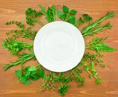Fresh Herbs Collection as Border Around White Plate — Stock Photo