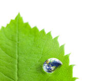 Earth into Big Water Drop on a Green Leaf / white background — Stock Photo