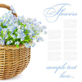 Bouquet of spring flowers in basket isolated on white background — Stock Photo