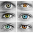 Set of 6 Colorful Different Open Eyes - Huge Size — Stock Photo #19688889