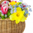 Stock Photo: Bouquet of Spring Flowers in Basket - isolated