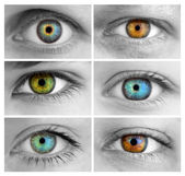 Set of 6 Colorful Different Open Eyes - Huge Size — Stock Photo