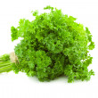 Bunch of fresh Parsley - isolated on white  — Stock Photo