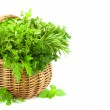 Fresh Spicy Herbs in Basket - isolated on white — Stock Photo