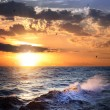 Stormy sea with sundown and birds , beautiful weather — Stock Photo