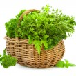 Stock Photo: Collection of Fresh Spicy Herbs in Basket - isolated