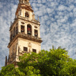 Bell Tower (Torre de Alminar) of the Mezquita Cathedral (The Gre — Stock Photo