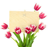 Beautiful Tulips and Empty Sign for text - wooden panel — Stock Photo