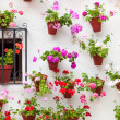 Beautiful Window and Wall Decorated Flowers - Old European Town, — Stock Photo