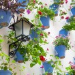 Blue Flowerpots and Flowers on a white wall with vintage lantern — Stock Photo