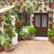 Spring Flowers Decoration of Old House, Spain, Europe — Stock Photo #48792215