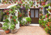 Spring Flowers Decoration of Old House, Spain, Europe — Stock Photo