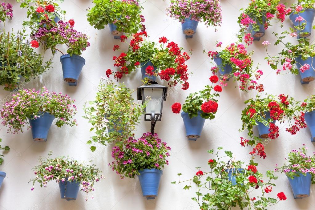 Azul macetas y flores rojas sobre una pared blanca con - Macetas para pared ...