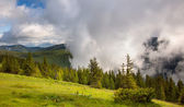 Majestic fog and clouds in the  Mountain valley landscape — Stock Photo