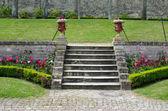Merdiven Demlikli — Stok fotoğraf