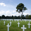 Normandy cemetery — Stock Photo #25688707