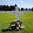 Stock Photo: Normandy cemetery