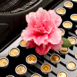 Old machine typewriter with flower — Zdjęcie stockowe