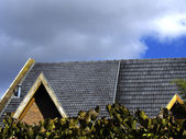 Roof residence — Stockfoto