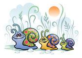 Snails in morning — Stock Vector