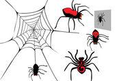 Spider set. — Stock Vector