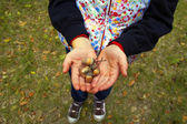 Acorn in hand — Stock Photo