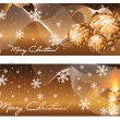 Set xmas winter banners, vector illustration — Stock Vector