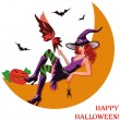 Halloween witch and moon. vector illustration — Stock Vector