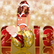New 2013 year card with sexy christmas girl, vector illustration — Stock Vector