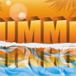 Summer tropical banner, vector illustration  — Stock Vector