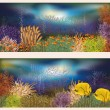 Underwater world two banners, vector illustration — Stock Vector #25899373