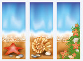 Set summer beach banners, vector illustration — Stock vektor