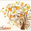 Beautiful Autumn Tree . vector illustration — Stock Vector