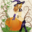 Halloween sexy witch with spider and pumpkin, vector illustration — Stock Vector