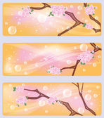 Spring sakura flowers banners, vector illustration — Stock Vector