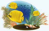 Morskie ryby, żółty, ilustracji wektorowych — Wektor stockowy