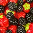 Blackberries strawberries closeup - Stock Photo