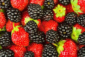 Blackberries strawberries closeup — Stock Photo