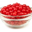 Viburnum bowl — Stock Photo #18528245