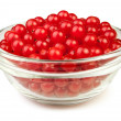 Viburnum bowl — Stock Photo #29754851